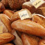 【小麦】春小麦と冬小麦、何が違うの?【小麦カレンダーの見方】
