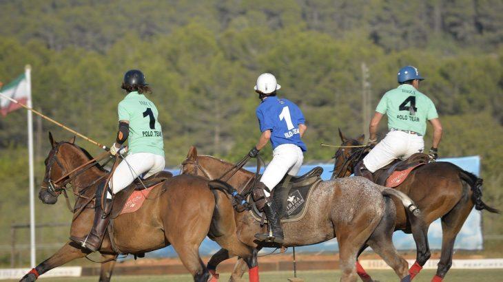 【馬】高校地理での馬の扱い。南船北馬とは