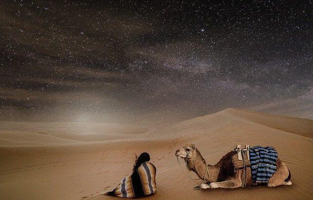 【BW】砂漠気候の特徴 乾燥限界の計算の仕方