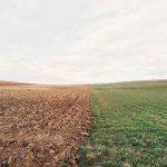 成帯土壌と間帯土壌の違いについて解説します