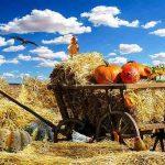 ホイットルセーの農業地域区分13種類の特徴を解説